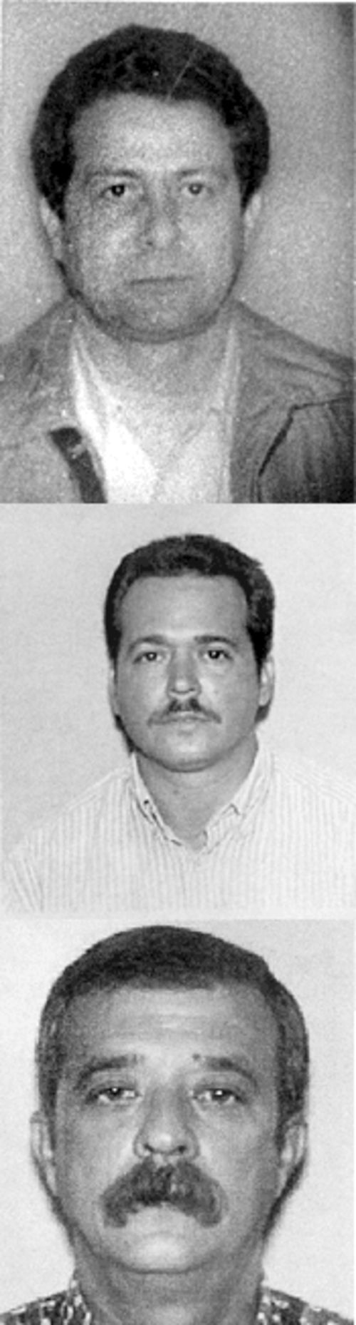 Three Wasps who got away: Cuban agents Albert Ruiz, Remijio Luna, and Ricardo Villareal