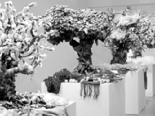 Guerra de la Paz's Four Seasons transforms the detritus of American closets into art and theater