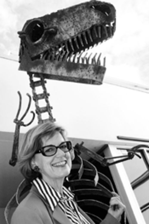 Gillian Thomas, president of the Miami Museum of Science, tried going it alone but was smacked down by the county commission