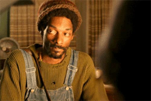 You loved him as Huggy Bear; Snoop's even better in  The Tenants
