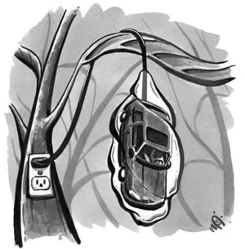 "See ""Punch Buggy,"" by Janine Zeitlin, below."