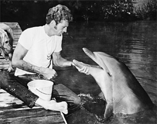Ric O'Barry and Flipper in 1964