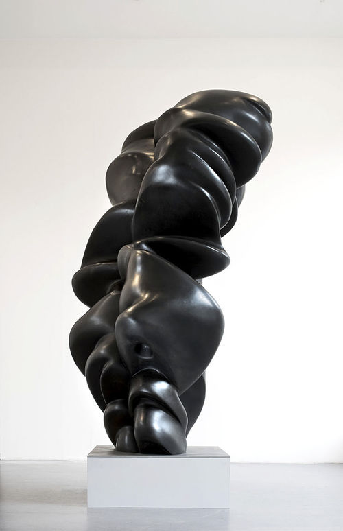 Tony Cragg's Good Face at Art Miami