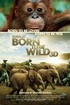 Born To Be Wild IMAX 3D