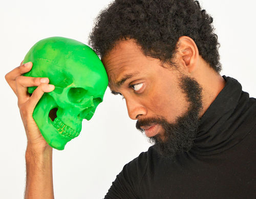 Troy Davidson plays a hip, bearded Hamlet in Mad Cat Theatre's The Hamlet Dog and Pony Show.