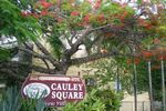 Cauley Square Village Shops
