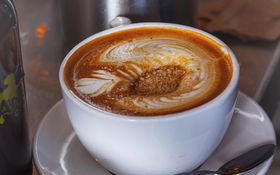 Thumbnail for Closer Look: Panther Coffee in Wynwood