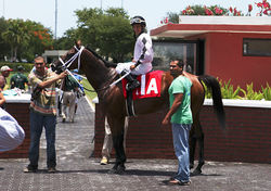 Jockey Jonathan Gonzales and trainer Kirk Ziadie after Sole Runner&#039;s surprise win.