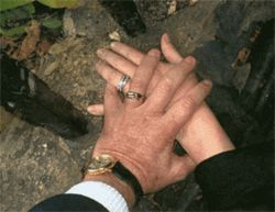 "The photo of Bruce's hand on Linda's, with their wedding  rings, that they titled ""Says it ALL"""