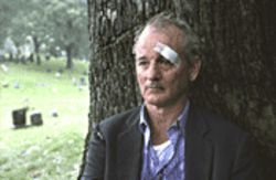 Bill Murray in Broken Flowers: Less Stripesthan a  solid shade of gray