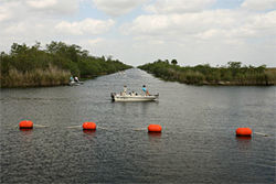 The L-67A canal is one of the best fishing holes on Earth. Restoration plans call for it to be filled with dirt.