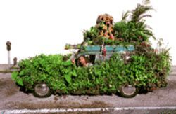 Keith Moss camouflaged by the verdure of his car