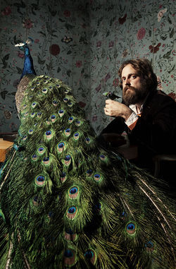 "Iron & Wine's Sam Beam promises ""radio-friendly"" music."