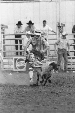 Mutton-Busting, Crawford County Fairgrounds, 