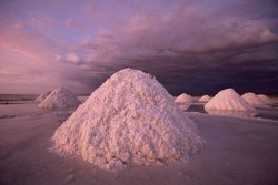 Half the world's lithium lies beneath the Salar de Uyuni, the world's largest salt flat.
