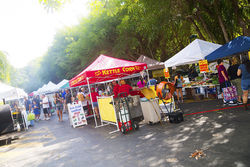 Vendors line the walkway at Pinecrest Gardens Farmers' Market.