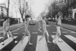 The Red Hot Chili Peppers traverse Naked Road
