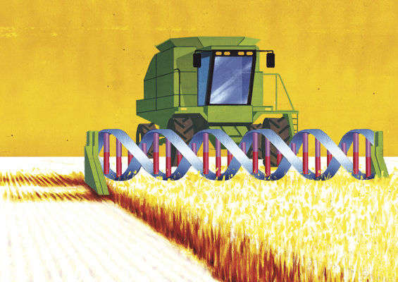How Monsanto Is Terrifying the Farming World
