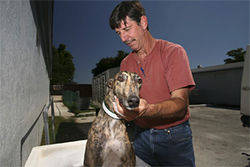 Joe Trudden says he gives every dog a dip in the whirlpool after each race.