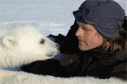 Friday: Rubbing noseswith polar bears