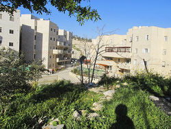 Surrounding the Hamdallahs are several Jewish condominiums in the Arab East Jerusalem neighborhood.