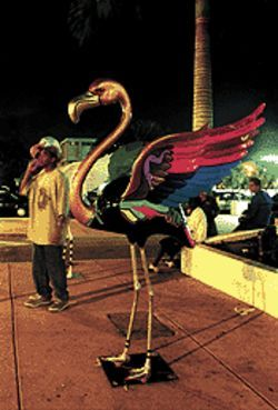 There are flamingos in Miami, though it's a stretch to call them art