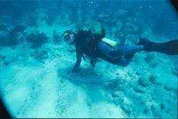 A park service diver surveys a wreck site.  Most remains are left in place for future study