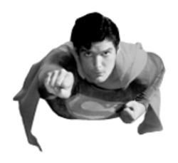 It's a bird ... it's a plane ... it's a tribute to Christopher Reeve