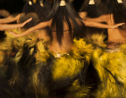 Traditional hula dancers photographed by Mikail Baryshnikov.